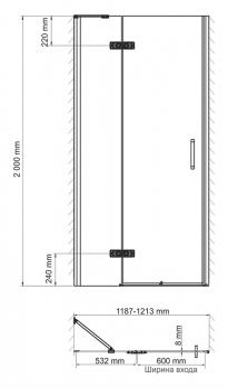 Душевая дверь, распашная на петлях, левая WasserKRAFT Aller 10H05L (1200x2000 мм)