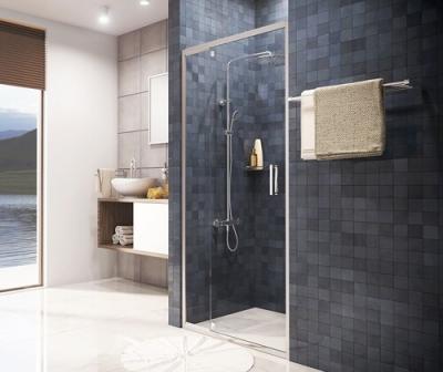 Душевая дверь, распашная, универсальная WasserKRAFT Berkel 48P05 (1200x2000 мм)