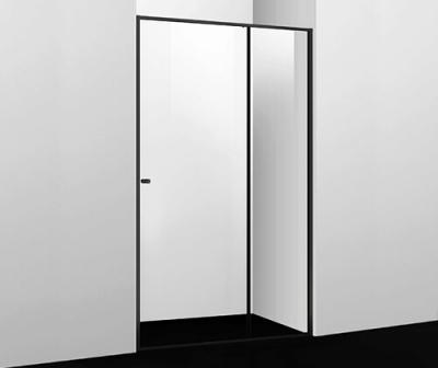Душевая дверь WasserKRAFT Dill 61S13 (1100x2000 мм)